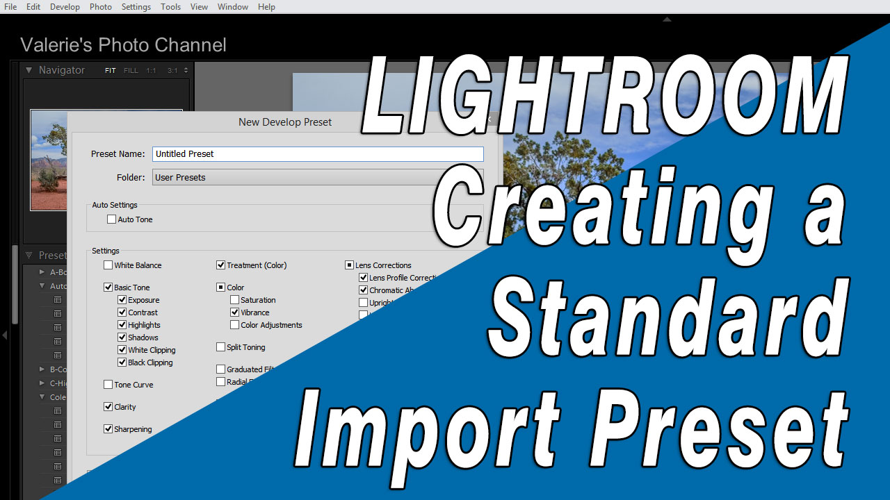 Creating a standard import preset in Lightroom