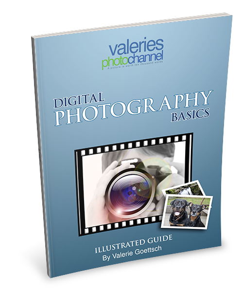 Get the perfect camera guide for photo enthusiasts. An amazing free resource for beginner and intermediate photo enthusiasts, for compact camera or DSLR users.