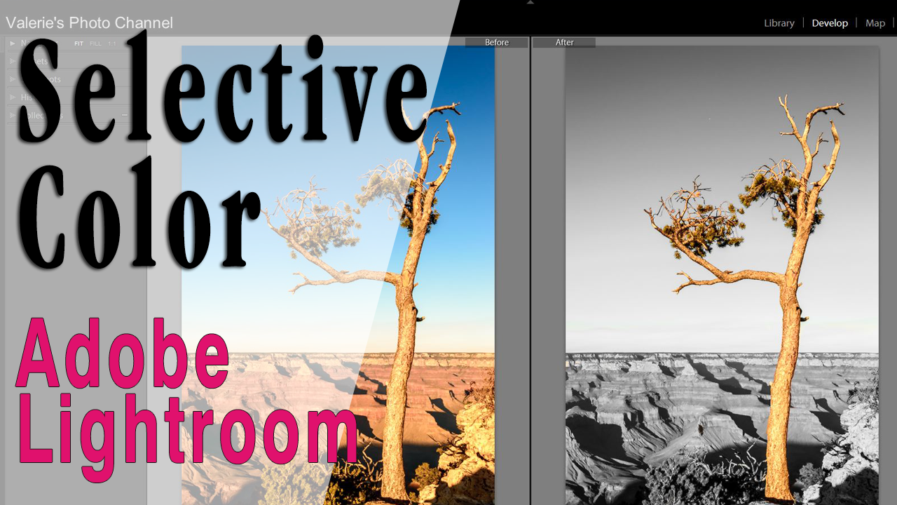 Using Selective Color