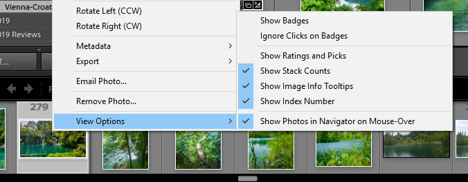 A welcome addition in the Lightroom Classic 8.4 update is the ability to ,Show or Hide Filmstrip Index Numbers