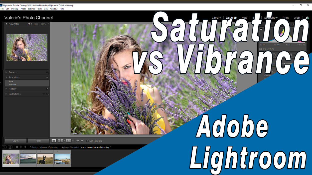 Using Saturation and Vibrance color adjustments in Lightroom