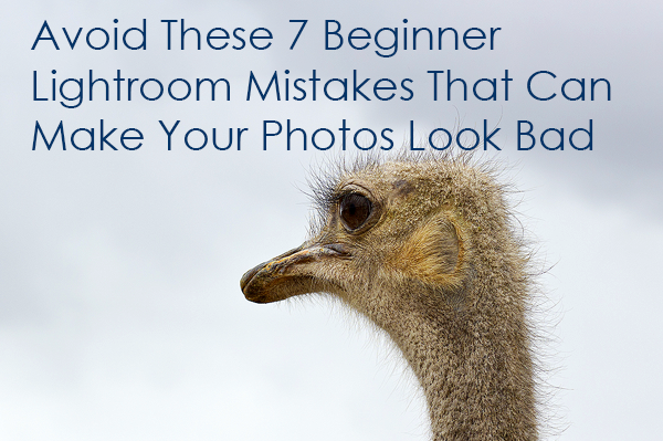 Editing mistakes you want to avoid as a new Lightroom user