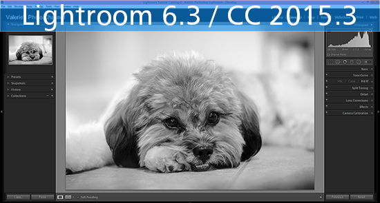 Adobe goes back to the old import process with the Lightroom 6.3 update