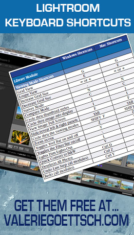 Using keyboard shortcuts can greatly speed up your Lightroom workflow. Download