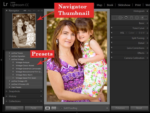 Use the Navigator to preview how the preset will look applied to your photo