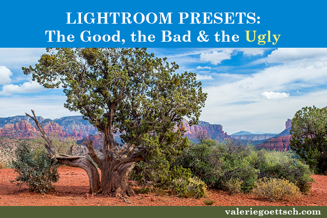 what you need to know about Lightroom Develop Presets: The good and the bad