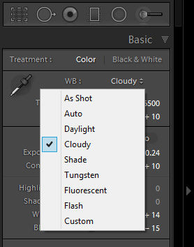 If you shoot in raw, the dropdown menu will list the same white balance options your camera has.
